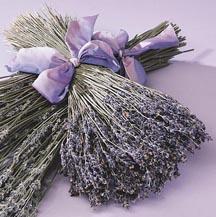 sct_lavenderbouquet